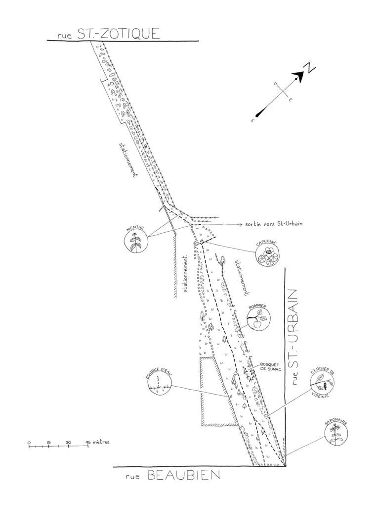 Une «cartographie éphémère» du site a été réalisée par Dominique Ferraton dans le cadre d'un ouvrage sur les terrains vagues de Montréal.
